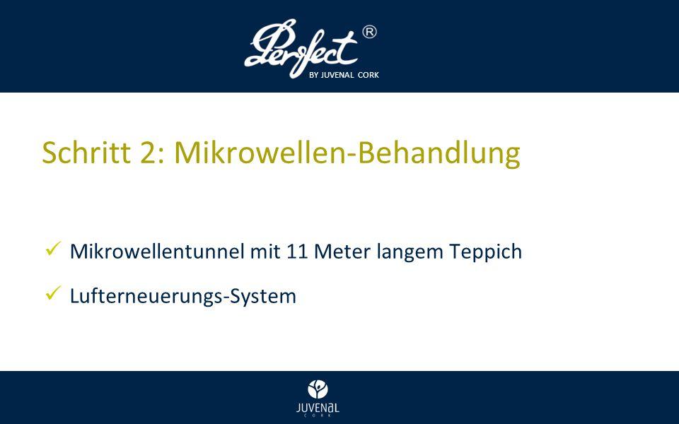 BY JUVENAL CORK Schritt 2: Mikrowellen-Behandlung Mikrowellentunnel mit 11 Meter langem Teppich Lufterneuerungs-System