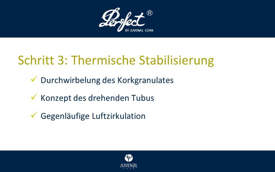 BY JUVENAL CORK Schritt 3: Thermische Stabilisierung Durchwirbelung des Korkgranulates Konzept des drehenden Tubus Gegenläufige Luftzirkulation