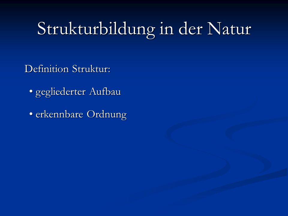 Definition Struktur: gegliederter Aufbau gegliederter Aufbau erkennbare Ordnung erkennbare Ordnung Strukturbildung in der Natur