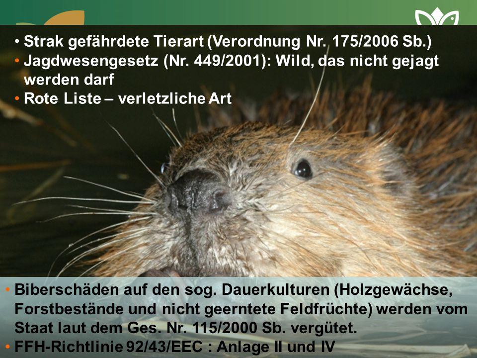 Strak gefährdete Tierart (Verordnung Nr. 175/2006 Sb.) Jagdwesengesetz (Nr. 449/2001): Wild, das nicht gejagt werden darf Rote Liste – verletzliche Ar