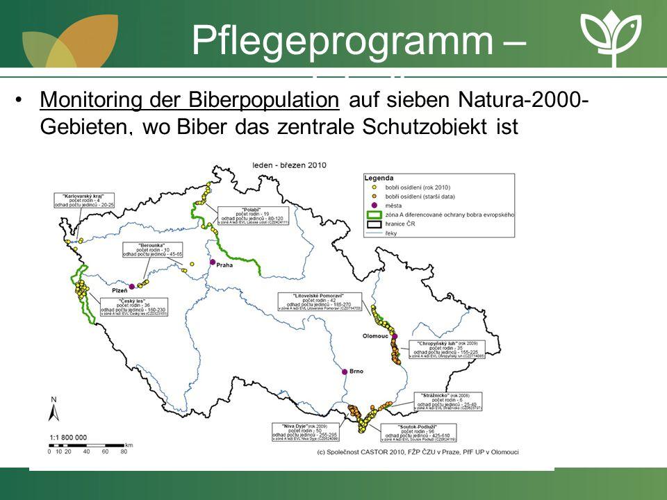 Pflegeprogramm – Inhalt Monitoring der Biberpopulation auf sieben Natura-2000- Gebieten, wo Biber das zentrale Schutzobjekt ist
