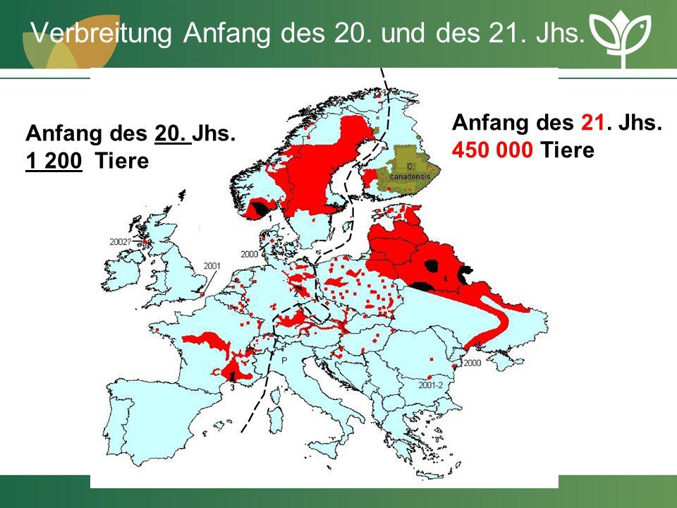 Verbreitung Anfang des 20. und des 21. Jhs. Anfang des 20. Jhs. 1 200 Tiere Anfang des 21. Jhs. 450 000 Tiere