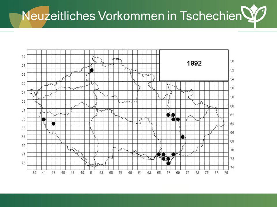 1992 Neuzeitliches Vorkommen in Tschechien