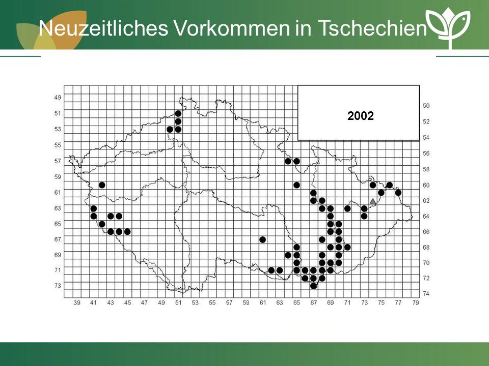 2002 Neuzeitliches Vorkommen in Tschechien