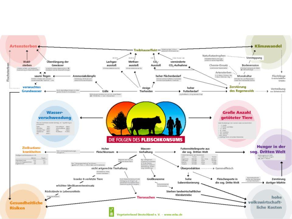 F:\folgen_des_fleisch konsums.pdfF:\folgen_des_fleisch konsums.pdf