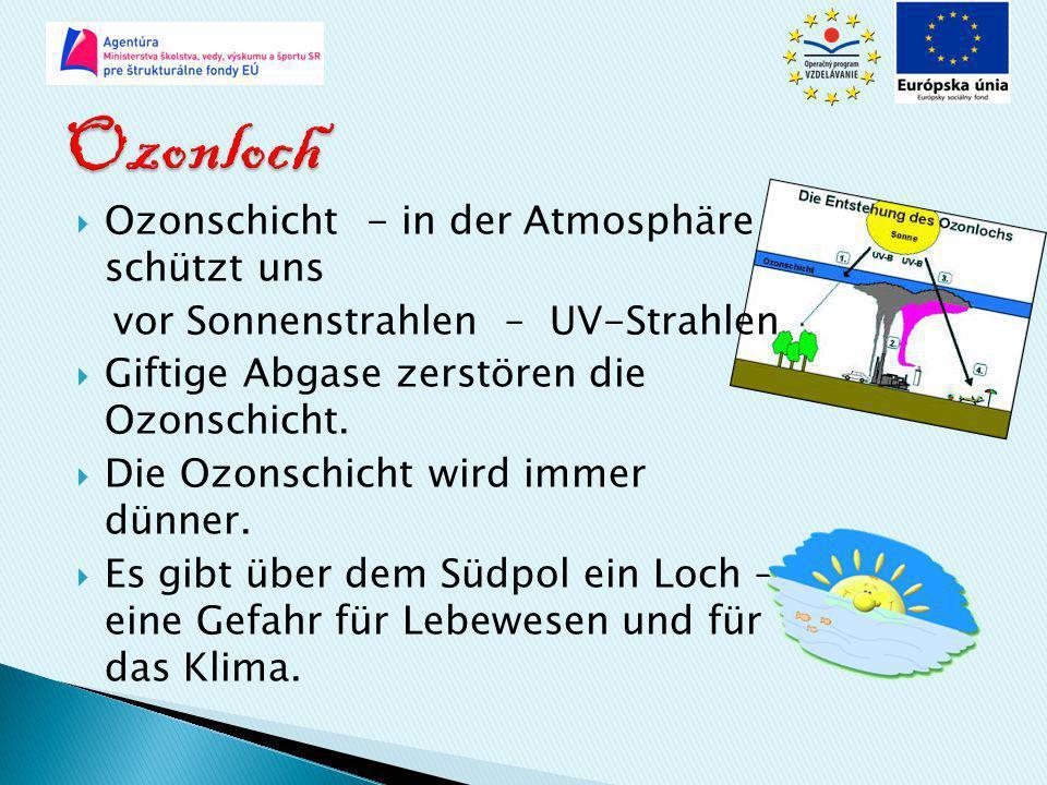  Ozonschicht - in der Atmosphäre schützt uns vor Sonnenstrahlen – UV-Strahlen  Giftige Abgase zerstören die Ozonschicht.  Die Ozonschicht wird imme