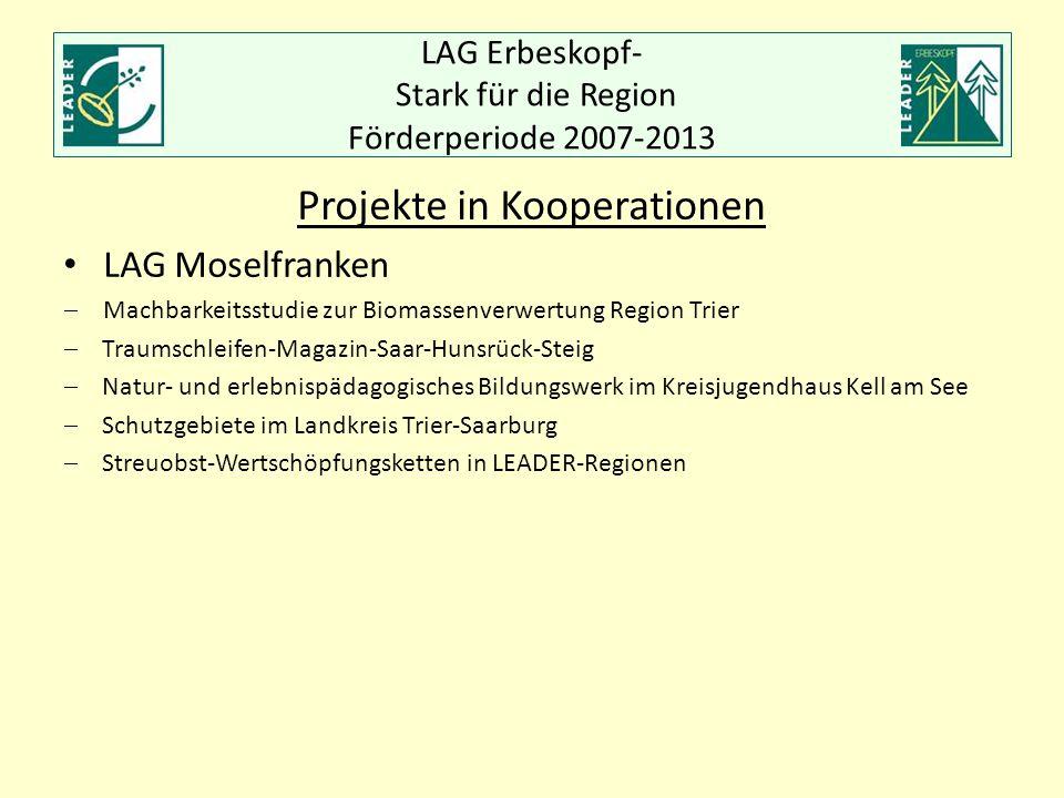 LAG Erbeskopf- Stark für die Region Förderperiode 2007-2013 Projekte in Kooperationen LAG Moselfranken  Machbarkeitsstudie zur Biomassenverwertung Re