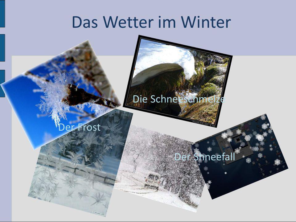 Der Frost Die Schneeschmelze Der Shneefall Das Wetter im Winter