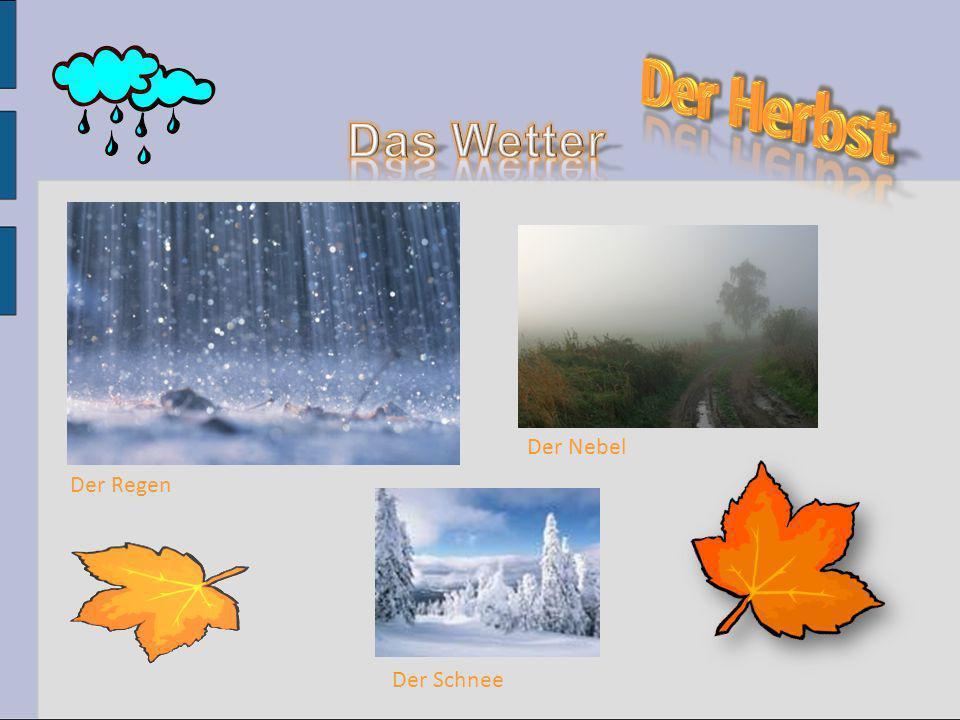 Der Regen Der Nebel Der Schnee