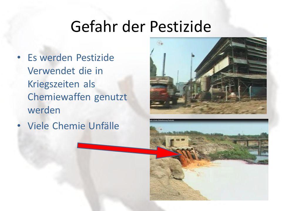 Transport mit Chemie Damit die Baumwolle während des Transports nicht schimmelt oder fault, werden Konservierungsstoffe eingesetzt.