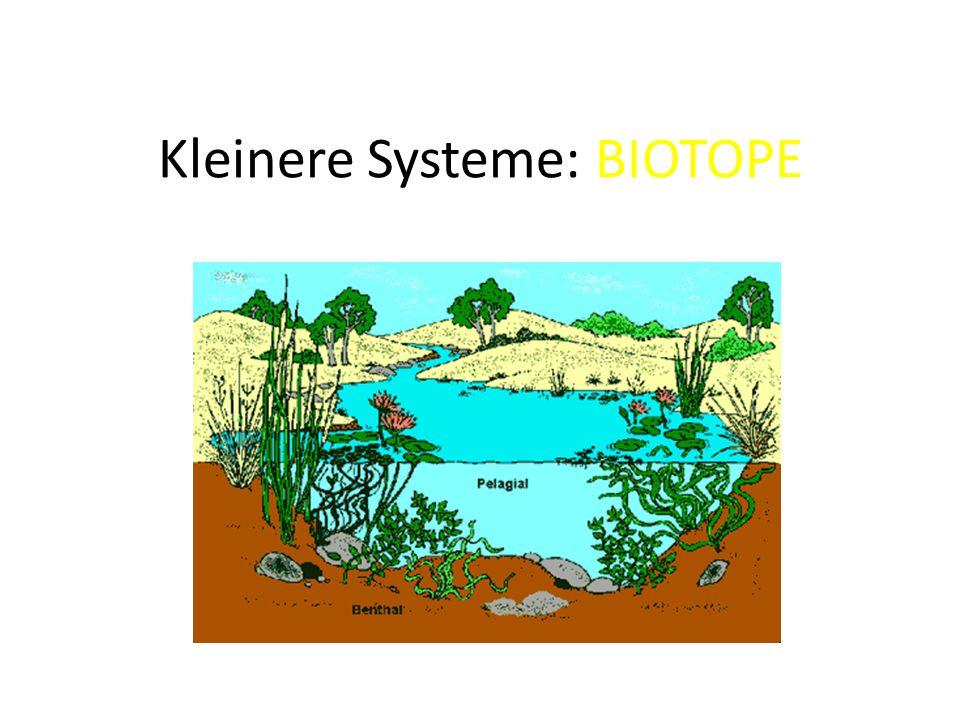 Kleinere Systeme: BIOTOPE