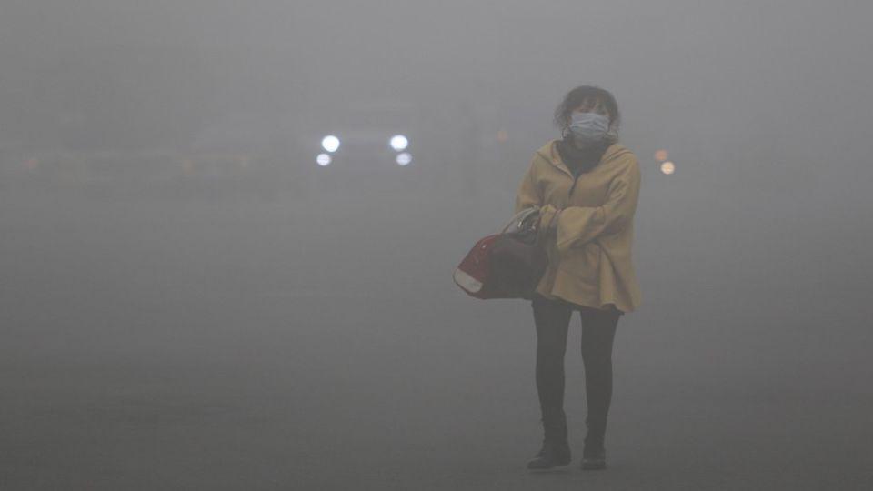 Umweltschutz ist eine Chance und keine Last, die wir tragen müssen. Helmut Sihler