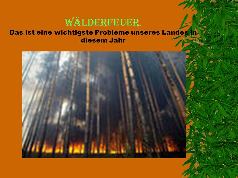 Wälderfeuer. Das ist eine wichtigste Probleme unseres Landes in diesem Jahr