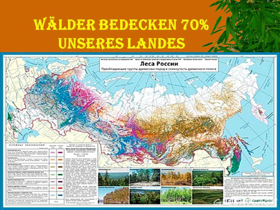 Wälder in Rjasan S = 1123 tausend Hektar