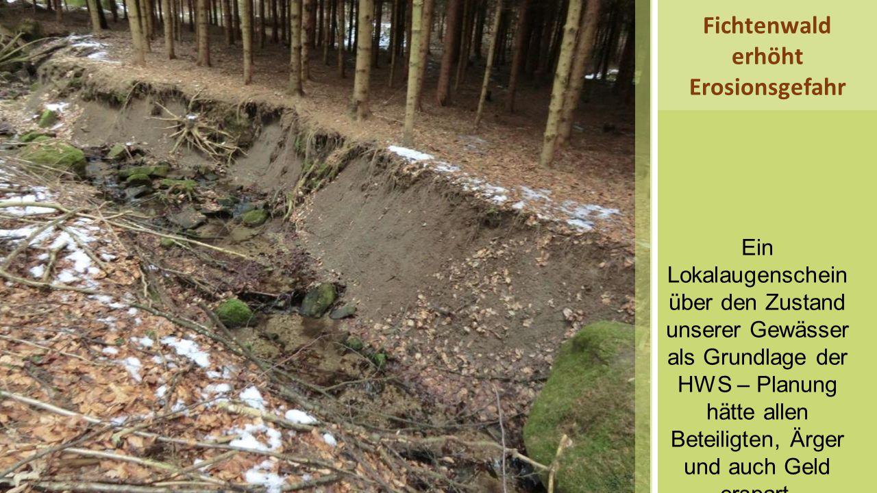 Ein Lokalaugenschein über den Zustand unserer Gewässer als Grundlage der HWS – Planung hätte allen Beteiligten, Ärger und auch Geld erspart. Fichtenwa