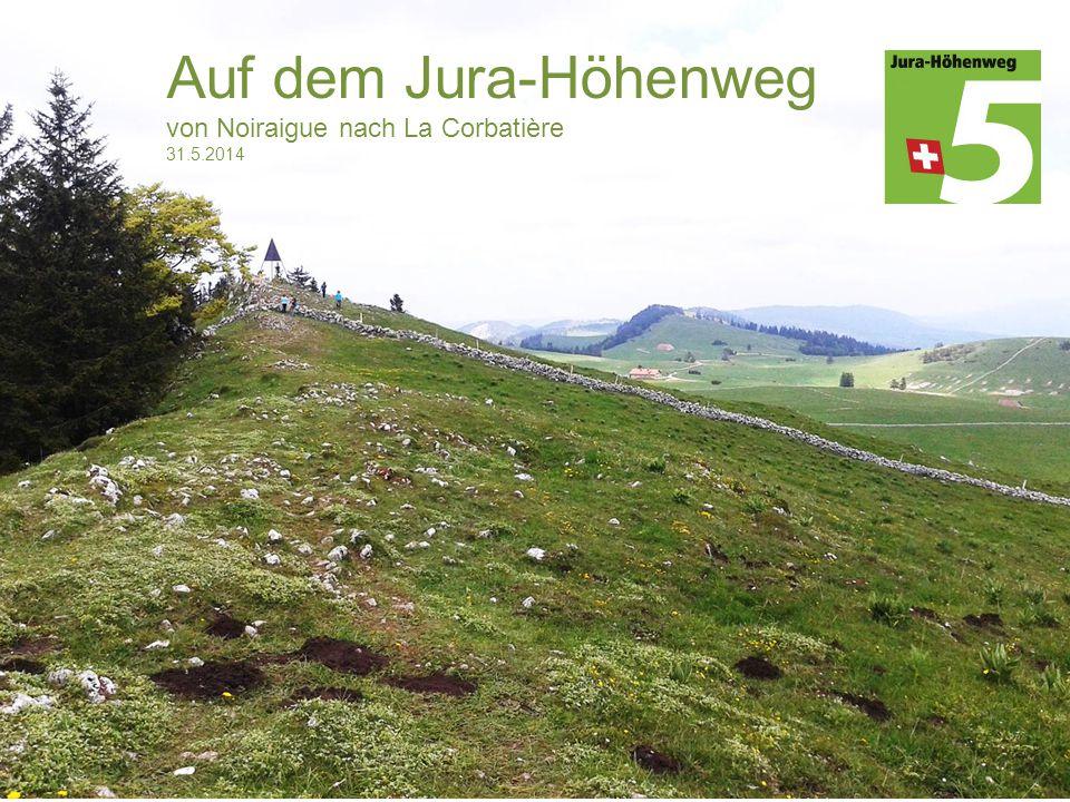 Auf dem Jura-Höhenweg von Noiraigue nach La Corbatière 31.5.2014