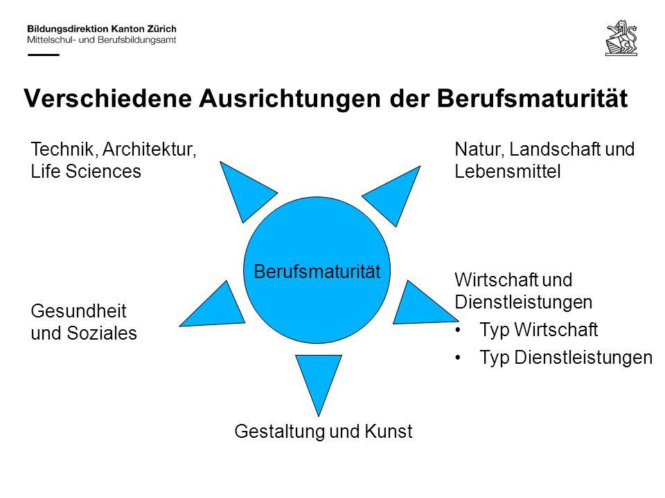 Verschiedene Ausrichtungen der Berufsmaturität Berufsmaturität Gestaltung und Kunst Wirtschaft und Dienstleistungen Typ Wirtschaft Typ Dienstleistunge