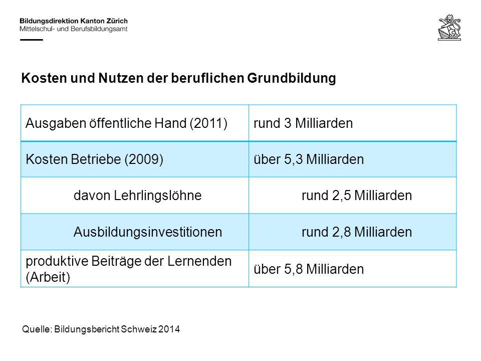 Kosten und Nutzen der beruflichen Grundbildung Ausgaben öffentliche Hand (2011)rund 3 Milliarden Kosten Betriebe (2009)über 5,3 Milliarden davon Lehrl