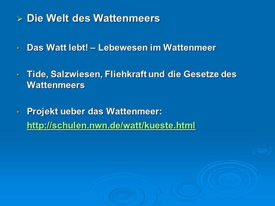  Die Welt des Wattenmeers Das Watt lebt! – Lebewesen im Wattenmeer Das Watt lebt! – Lebewesen im Wattenmeer Tide, Salzwiesen, Fliehkraft und die Gese