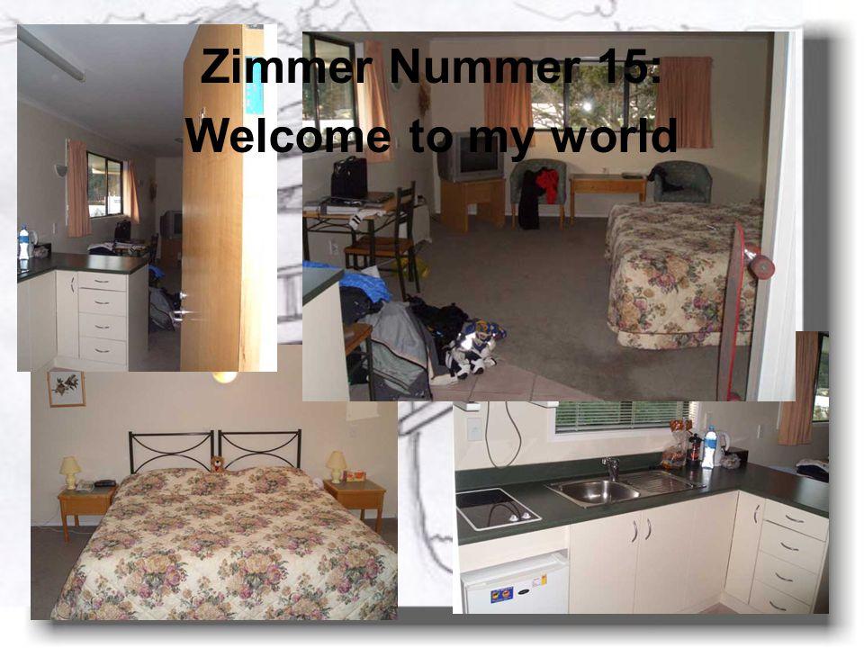 Zimmer Nummer 15: Welcome to my world