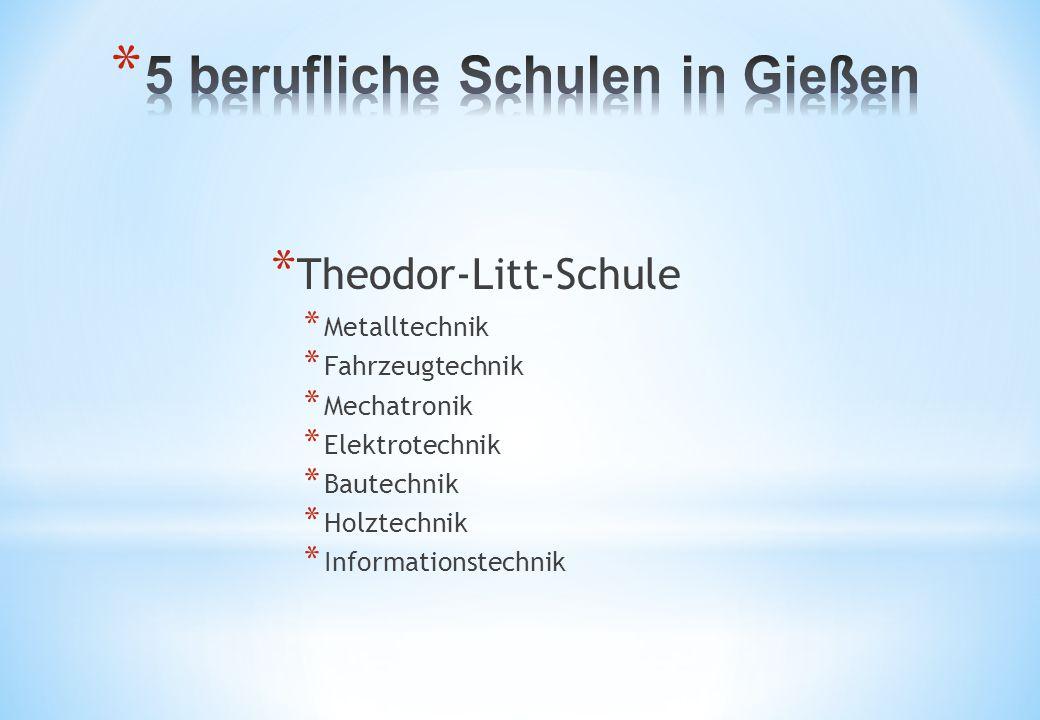 * Theodor-Litt-Schule * Metalltechnik * Fahrzeugtechnik * Mechatronik * Elektrotechnik * Bautechnik * Holztechnik * Informationstechnik