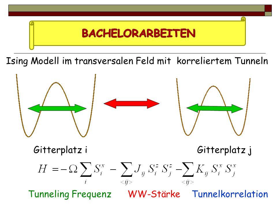 Ising Modell im transversalen Feld mit korreliertem Tunneln Gitterplatz i Gitterplatz j Tunneling Frequenz WW-Stärke Tunnelkorrelation