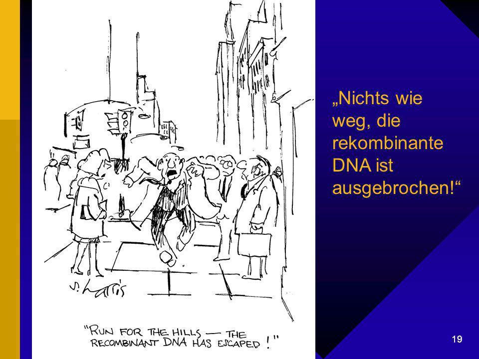 "Dr. G. Mackenthun, Berlin - 7. Mai 2003 19 Rekombinate DNA ""Nichts wie weg, die rekombinante DNA ist ausgebrochen!"""