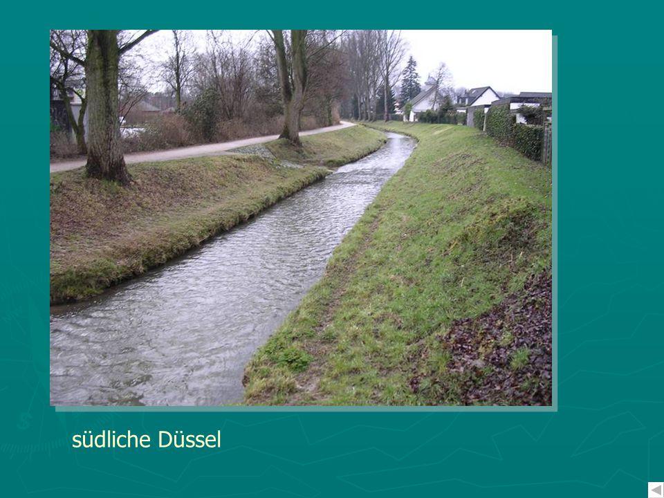 südliche Düssel