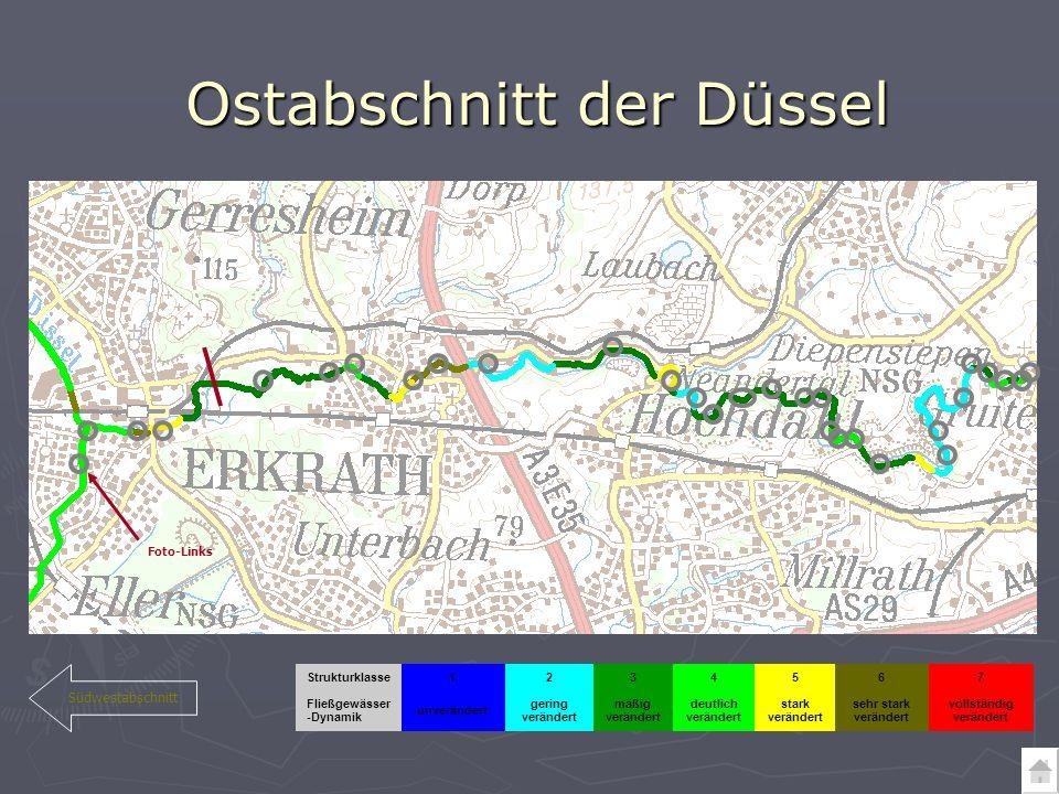 Ostabschnitt der Düssel Südwestabschnitt vollständig verändert sehr stark verändert stark verändert deutlich verändert mäßig verändert gering verändert unverändert Fließgewässer -Dynamik 7654321Strukturklasse Foto-Links