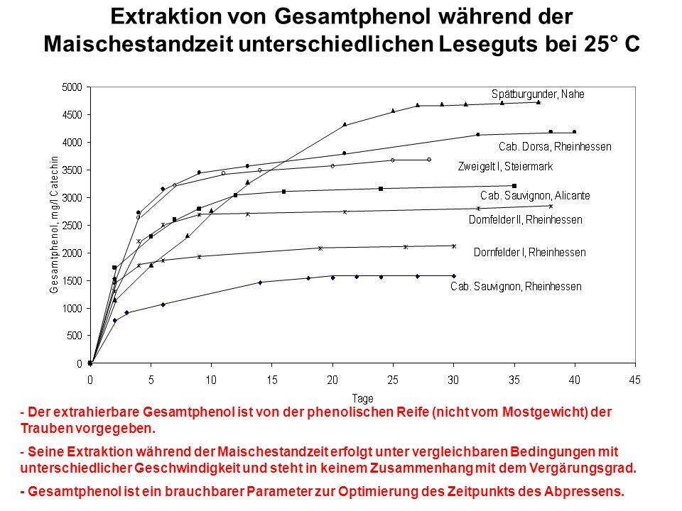 Extraktion von Gesamtphenol während der Maischestandzeit unterschiedlichen Leseguts bei 25° C - Der extrahierbare Gesamtphenol ist von der phenolische