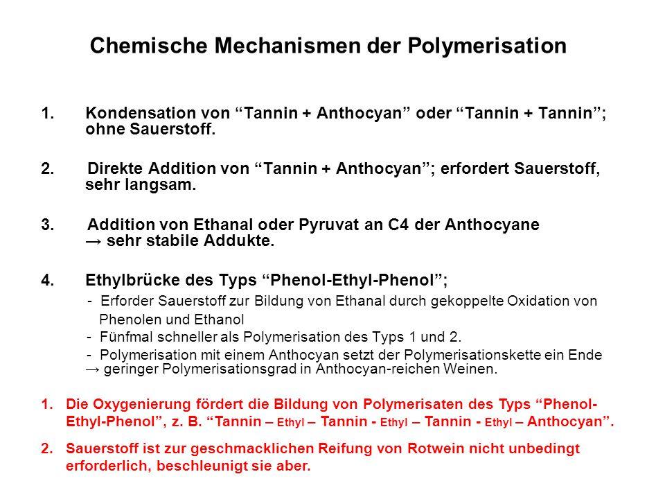 """Chemische Mechanismen der Polymerisation 1.Kondensation von """"Tannin + Anthocyan"""" oder """"Tannin + Tannin""""; ohne Sauerstoff. 2. Direkte Addition von """"Tan"""