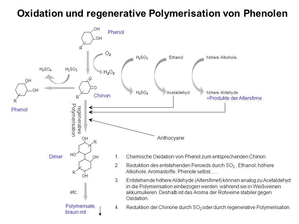 Oxidation und regenerative Polymerisation von Phenolen R OH R R O O H 2 SO 3 H 2 SO 4 R R OH HO OH Polymerisate, braun-rot Phenol Dimer Phenol etc. H