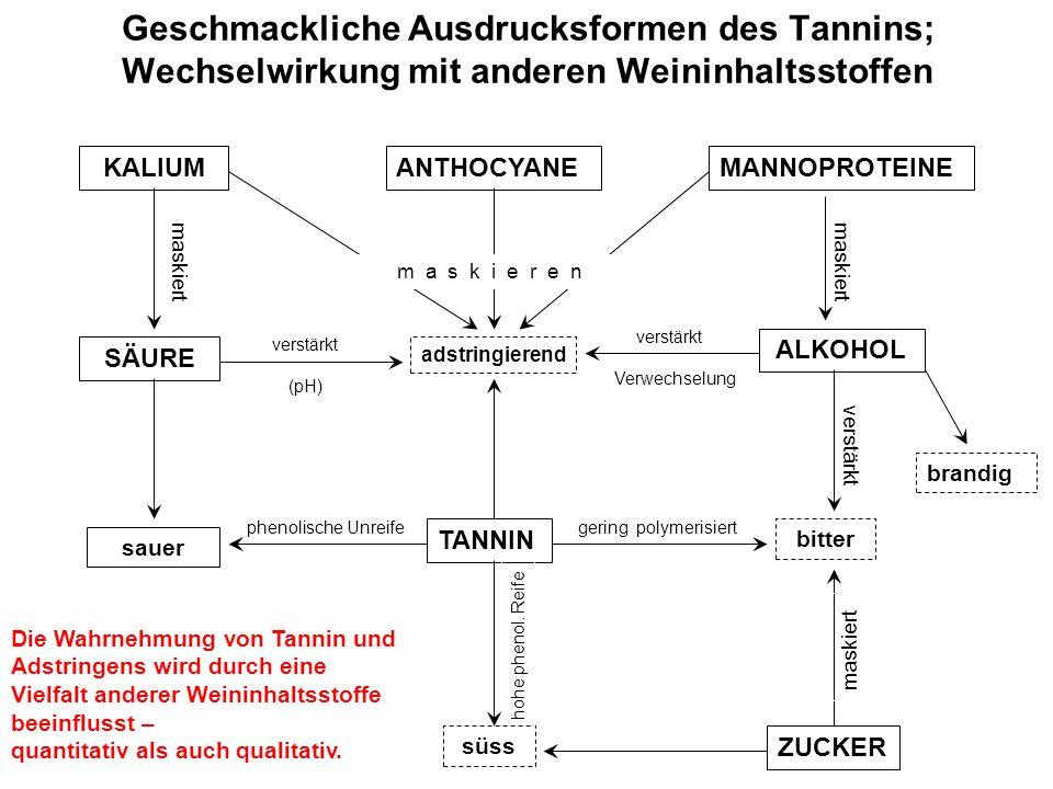 Geschmackliche Ausdrucksformen des Tannins; Wechselwirkung mit anderen Weininhaltsstoffen süss TANNIN ZUCKER bitter adstringierend ANTHOCYANE ALKOHOL