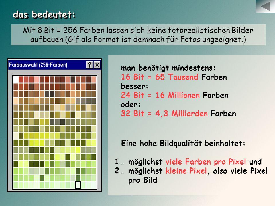 Eine hohe Bildqualität beinhaltet: 1.möglichst viele Farben pro Pixel und 2.möglichst kleine Pixel, also viele Pixel pro Bild das bedeutet: Mit 8 Bit