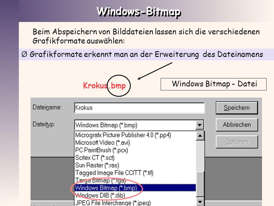 Windows-Bitmap Beim Abspeichern von Bilddateien lassen sich die verschiedenen Grafikformate auswählen: Ø Grafikformate erkennt man an der Erweiterung