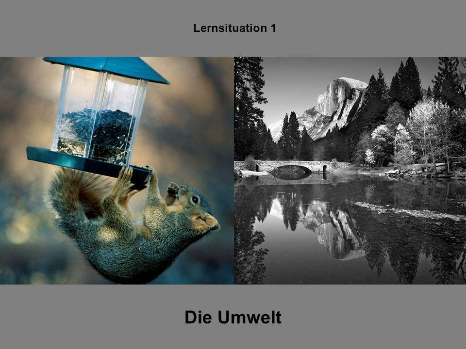 Lernsituation 1 Die Umwelt