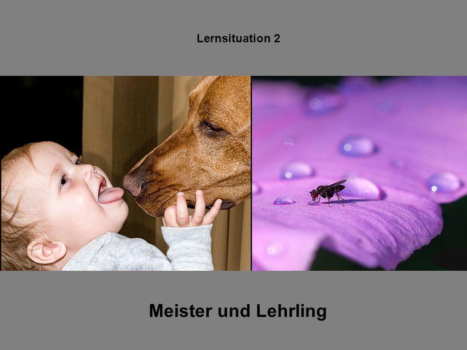 Lernsituation 2 Meister und Lehrling