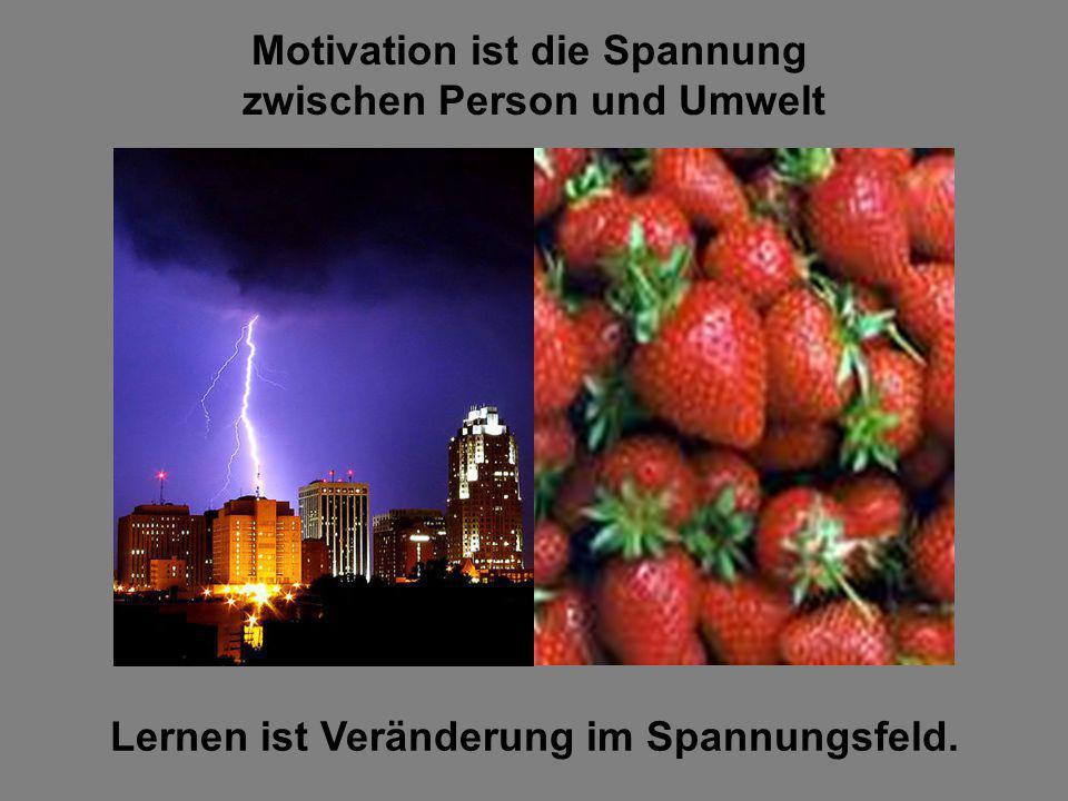 Motivation ist die Spannung zwischen Person und Umwelt Lernen ist Veränderung im Spannungsfeld.