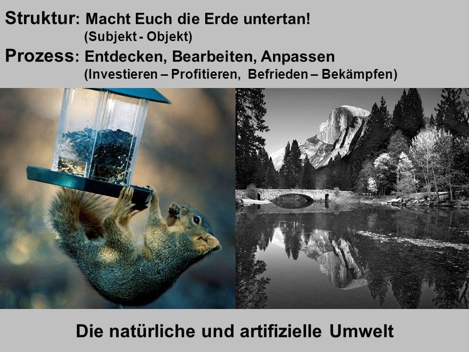 Die natürliche und artifizielle Umwelt Lernsituation 1 Struktur : Macht Euch die Erde untertan! (Subjekt - Objekt) Prozess : Entdecken, Bearbeiten, An