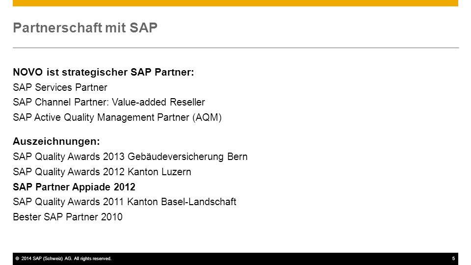 SAP Integration und Verbuchung