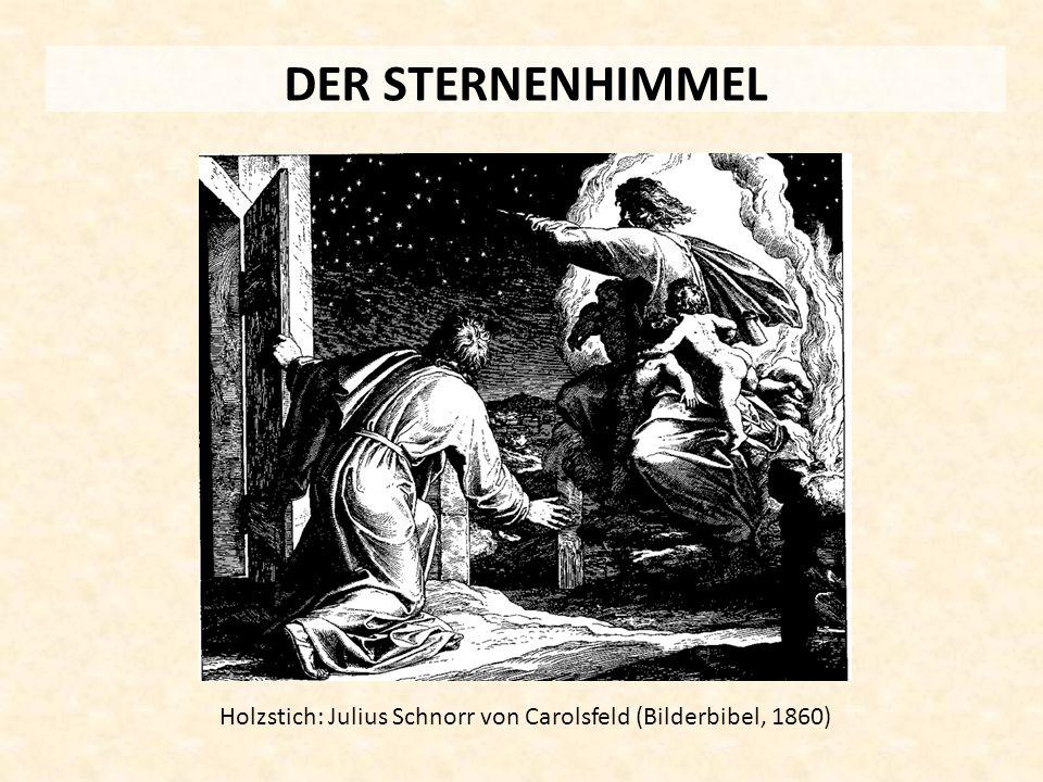 DER STERNENHIMMEL Holzstich: Julius Schnorr von Carolsfeld (Bilderbibel, 1860)