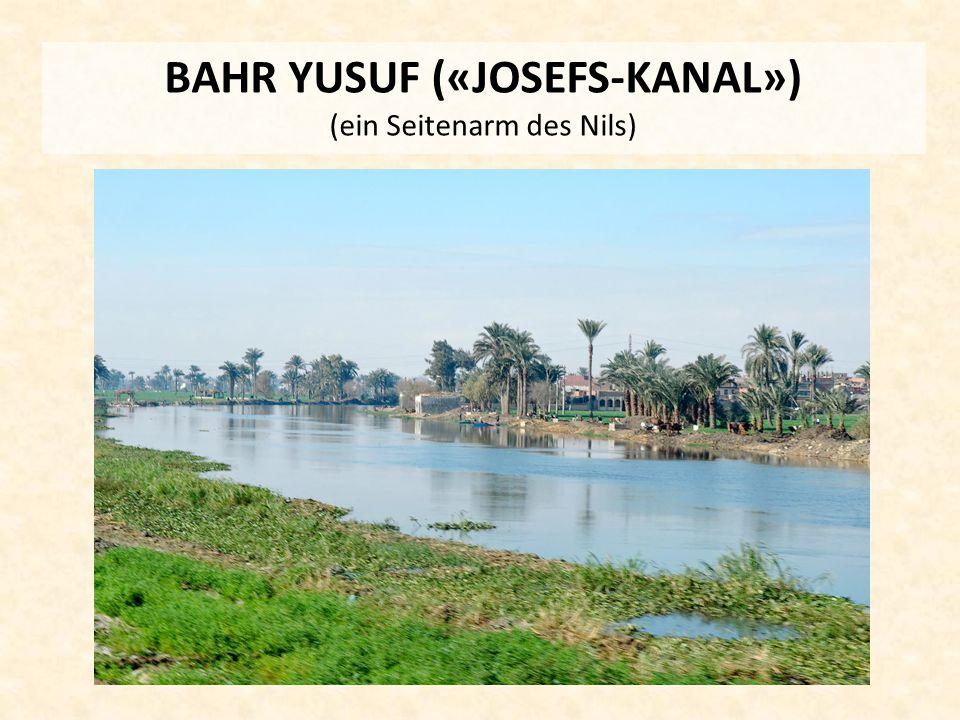 BAHR YUSUF («JOSEFS-KANAL») (ein Seitenarm des Nils)