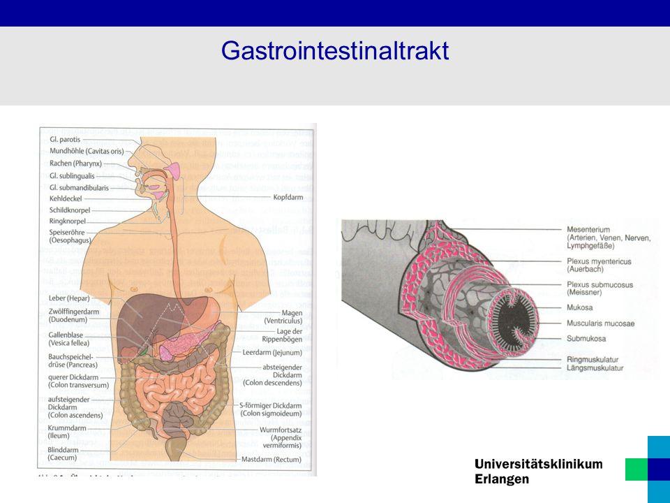 Definition: Lähmung der Darmmotorik v.a.