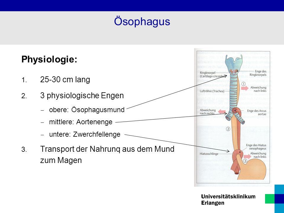 Diagnostik: Endoskopische Diagnosesicherung mit Biopsie Röntgenbreischluck (Füllungsdefekte, Verlust der Schleimhautstruktur, Wandstarre, zirkuläre Stenose) Endosonographie Bronchoskopie CT des Mediastinums (zur Bestimmung der Ausdehnung) Staging: Rö.