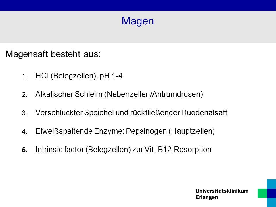 Magensaft besteht aus: 1. HCI (Belegzellen), pH 1-4 2. Alkalischer Schleim (Nebenzellen/Antrumdrüsen) 3. Verschluckter Speichel und rückfließender Duo
