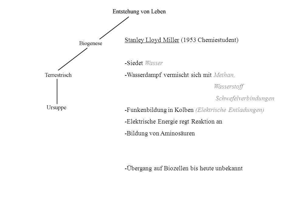 Stanley Lloyd Miller (1953 Chemiestudent) -Siedet Wasser -Wasserdampf vermischt sich mit Methan, Wasserstoff Schwefelverbindungen -Funkenbildung in Ko
