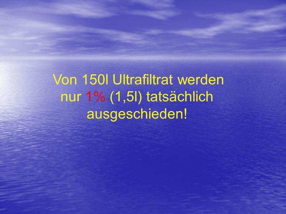 Von 150l Ultrafiltrat werden nur 1% (1,5l) tatsächlich ausgeschieden!