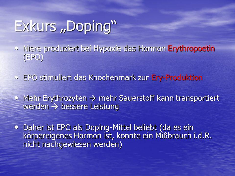 """Exkurs """"Doping"""" Niere produziert bei Hypoxie das Hormon Erythropoetin (EPO) Niere produziert bei Hypoxie das Hormon Erythropoetin (EPO) EPO stimuliert"""