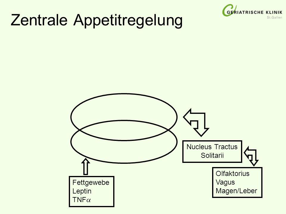 Zentrale Appetitregelung Nucleus Tractus Solitarii Olfaktorius Vagus Magen/Leber Fettgewebe Leptin TNF 