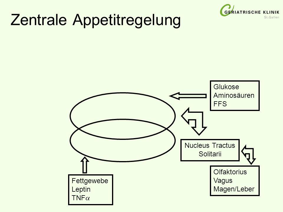 Zentrale Appetitregelung Glukose Aminosäuren FFS Nucleus Tractus Solitarii Olfaktorius Vagus Magen/Leber Fettgewebe Leptin TNF 